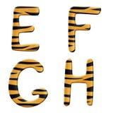 tigre de pièce de 2 alphabets Image stock