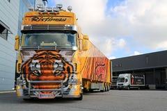 Tigre del camión de la demostración de Scania R620 en Warehouse Imagen de archivo libre de regalías