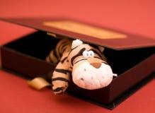 Tigre del giocattolo in contenitore di regalo Fotografia Stock