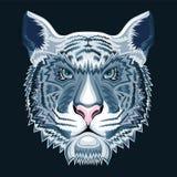 Tigre della neve Immagine Stock Libera da Diritti