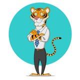 Tigre do escritório Imagem de Stock Royalty Free