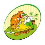 Tigre domestica Immagini Stock