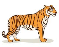 Tigre dos desenhos animados Imagem de Stock Royalty Free