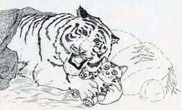 Tigre ed il suo giocattolo favorito Fotografia Stock