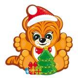 Tigre en el sombrero de Santa Fotos de archivo libres de regalías