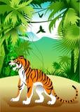 Tigre en la selva Foto de archivo