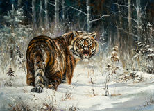 Tigre en madera del invierno Libre Illustration