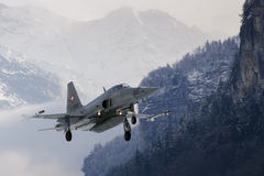 Tigre F-5 suisse Image stock