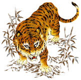 Tigre japonés Fotos de archivo