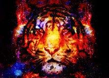 Tigre mágico del espacio, collage multicolor del gráfico de ordenador Fotos de archivo libres de regalías