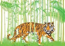 Tigre na selva ilustração do vetor