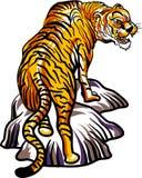 Tigre nas rochas ilustração stock