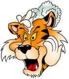 Tigre que se lava Imagen de archivo libre de regalías
