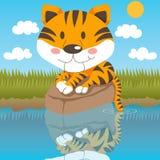 Tigre Relaxed Fotos de Stock Royalty Free