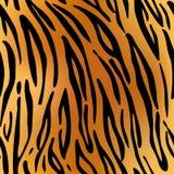 Tigre Repetição da textura do teste padrão sem emenda Imagens de Stock