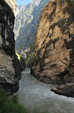 Tigre sautant la gorge Photo stock