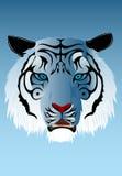 Tigre Siberian Ilustração Royalty Free