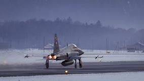 Tigre suizo de F-5E Imagen de archivo libre de regalías