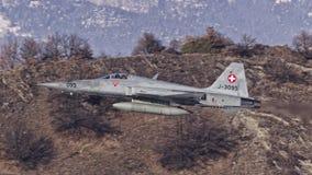 Tigre suizo de F-5E Foto de archivo libre de regalías
