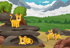 Tigre sul fondo del paesaggio delle montagne Immagini Stock Libere da Diritti