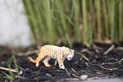 Tigre in un paesaggio dell'erba fotografie stock libere da diritti