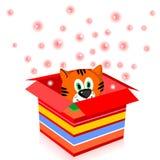Tigre in una casella Fotografia Stock