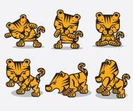 Tigres Ilustração Royalty Free
