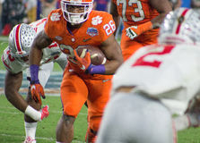 Tigres de Clemson du football de NCAA à la cuvette de fiesta Photos stock