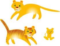 Tigres e puma Ilustração do Vetor