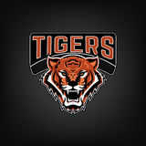 tigres Emblema con la cabeza enojada del tigre Plantilla del logotipo del equipo de deporte Foto de archivo libre de regalías