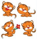 Tigres oranges Images libres de droits
