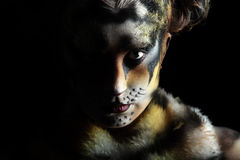 Tigress In The Darkness Royalty Free Stock Image