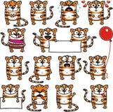 Tigri divertenti (1) Fotografie Stock Libere da Diritti