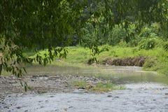 Tiguman flod på barangay Tiguman, Digos stad, Davao del Sur, Filippinerna arkivbilder