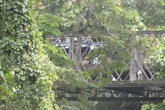 Tigumanbrug in barangay Tiguman, Digos-Stad, Davao del Sur, Filippijnen stock fotografie