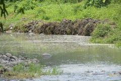 Tigumanrivier in barangay Tiguman, Digos-Stad, Davao del Sur, Filippijnen royalty-vrije stock foto's