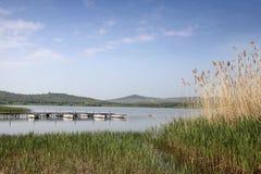 tihany balaton的湖 库存照片