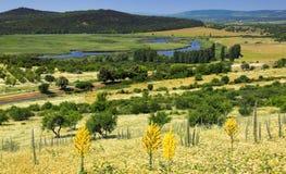The Tihany peninsula in Hungary Royalty Free Stock Image
