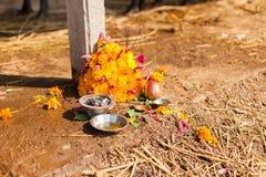 Tihar festival offering Stock Images