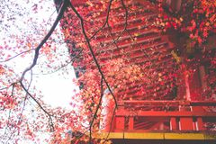 Tihu Temple, Kyoto stock photography