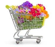 Tijd aan het tuinieren Stock Afbeelding