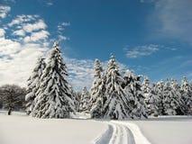 Tijd in de sneeuw stock foto's
