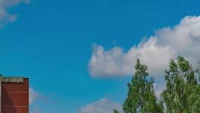 Tijd-tijdspanne 4k, goed weer, duidelijke blauwe hemel, groene bomen dichtbij het huis, sneeuwwitte wolken stock videobeelden