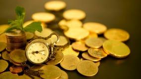Tijd voor succes van financiënzaken Investering, bedrijfs financieel ideeënconcept De beheersefficiency, tijd is geld stock video
