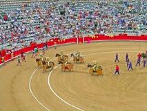 Tijdens corridastierenvechten Stock Foto's