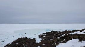 Tijdtijdspanne die van ijsstroom de kusten van Kaapspear Newfoundland raken stock videobeelden