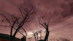 Tijdtijdspanne van doodsboom en droog geel gras bij mountian landschap met wolken en zonstralen Horizontale schuifbeweging stock video