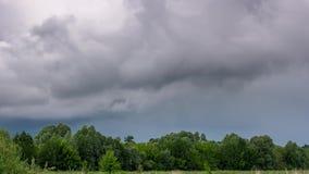 Tijdtijdspanne van onweerswolken die over groen bos overgaan stock video