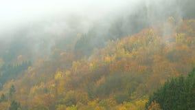 Tijdtijdspanne van wolken die over de heuvels van de herfsteifel in Duitsland drijven Z stock footage