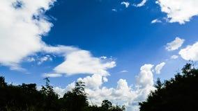 Tijdtijdspanne van wolken die zich in blauwe hemel met boomsilhouet bewegen stock footage